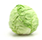 Icon of Cabbage